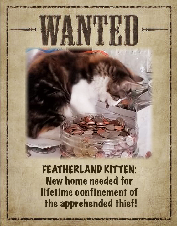 Featherland kitten thief